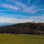 Grand Highlands on Bearwallow Mountain