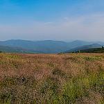 Great Balsam Range