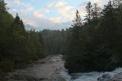 Little River at Dawn
