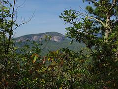 Looking Glass Rock from Bennett Gap Trail