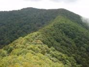 Snowball Ridge