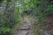Trail stairway