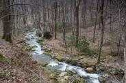 Davidson River tumbles down
