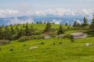 Grassy Ridge Bald