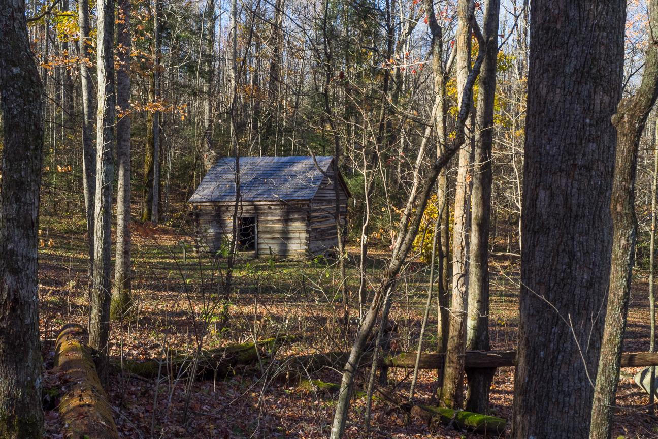 Smoky Mountains Georgia >> Meanderthals | Maddron Bald Trail to Albright Grove, Great Smoky Mountains National Park