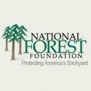 Nantahala-Pisgah National Forests Designated as Treasured Landscape by National Forest Foundation
