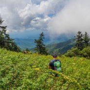 The 8 Most Endangered National Parks