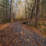 Buffalo Creek Park, Hickory Nut Gorge