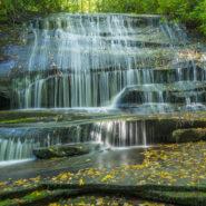 Cat Gap & Butter Gap Trails to Grogan Creek Falls, Pisgah National Forest