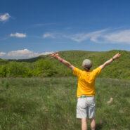 Appalachian Trail to Max Patch and Buckeye Ridge