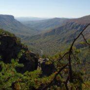 Jonas Ridge and Shortoff Trails, Linville Gorge Wilderness
