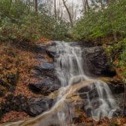 Seniard Ridge Trail to Log Hollow Falls, Pisgah National Forest