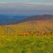 WCU professor predicts stunning fall leaf season