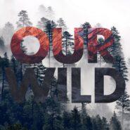 Our Wild