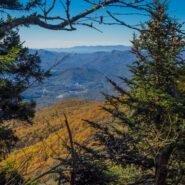 Waterrock Knob Across the Plott Balsams Range, Blue Ridge Parkway