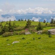 Appalachian Trail on Grassy Ridge, Roan Highlands