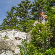 Ivestor Gap Trail to Shining Rock, Shining Rock Wilderness