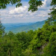 Snake Den Ridge Trail and Appalachian Trail to Inadu Knob, Great Smoky Mountains National Park